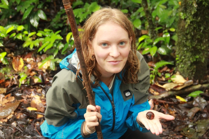 Holding a millipede which is hiding inside its shell! / Uskalsin ottaa käteeni kuoreensa piiloutuneen tuhatjalkaisen